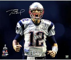 Tom Brady Autographié / Signé 20x24 Cri Photo Tristar Assermentée